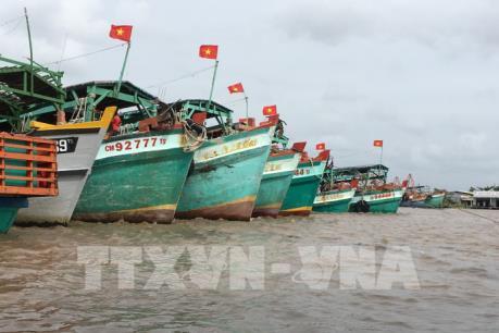 """Khắc phục """"thẻ vàng"""" IUU: Cà Mau tích cực ngăn chặn các hành vi đánh bắt hải sản trái phép"""
