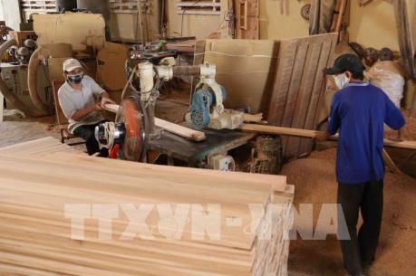 Ngành gỗ Việt Nam: Chưa khai thác hết thị trường nội địa