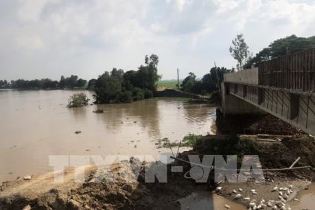 Việt Nam nằm trong 6 nước chịu thiệt hại nặng nề nhất vì biến đổi khí hậu