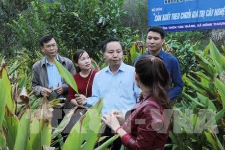 Thực hiện hiệu quả các dự án khuyến nông quốc gia