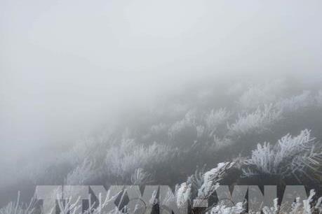Dự báo thời tiết tháng 1: Miền Bắc sẽ rét đậm rét hại vào nửa cuối tháng