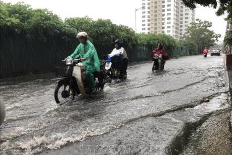 Dự báo thời tiết ngày 30/11: Từ Hà Tĩnh - Phú Yên tiếp tục có mưa to