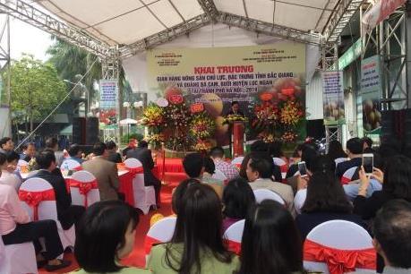Bắc Giang đưa nông sản chất lượng cao đến với người dân Thủ đô