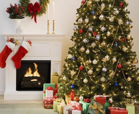 Vì sao người ta thường dùng cây thông để trang trí trong dịp Giáng sinh?