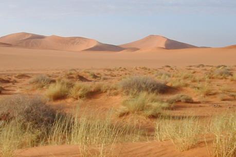 Sống sót sau 2 tuần lưu lạc tại vùng hoang mạc của Australia