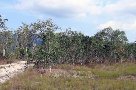 Phù phép đất rừng Vườn quốc gia Phú Quốc thành lập dự án - Bài 1