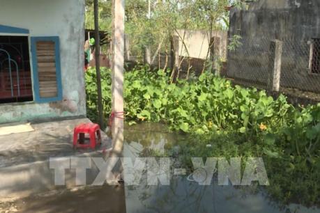 Phản hồi thông tin của TTXVN về Cụm dân cư vượt lũ ở Kiên Giang