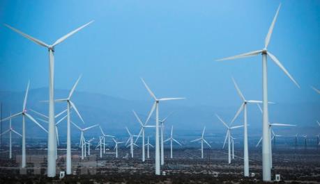 Công nghệ xanh và kinh tế xanh là tương lai của thế giới
