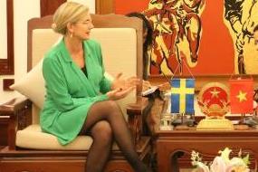 Thụy Điển đề xuất hỗ trợ Việt Nam gói tín dụng 1 tỷ USD phát triển hàng không