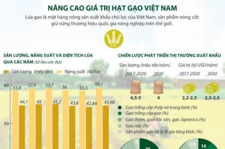 Nâng cao giá trị hạt gạo Việt Nam
