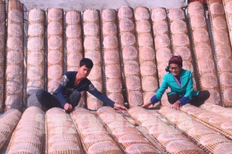 Bánh đa nem Thiệu Châu rộn ràng vào Tết