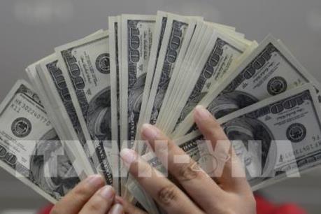 Hai đồng tiền luôn mạnh lên theo thời gian so với đồng USD trong thập kỷ qua