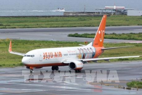 Hàng không giá rẻ Jeju Air chi 60 triệu USD mua lại Eastar Jet