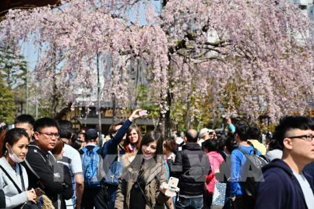 Ngành du lịch Hàn Quốc và Nhật Bản tổn thất do bất đồng thương mại