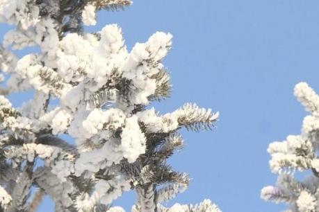 Công viên băng tuyết lớn nhất Trung Quốc mở cửa đón khách du lịch