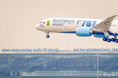 Từ ngày 9/1/2020, Bamboo Airways triển khai dịch vụ vận chuyển mai, đào