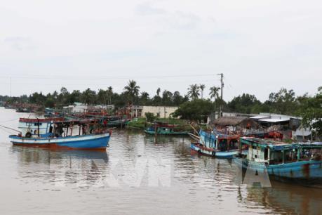 Việt Nam được đánh giá cao về nỗ lực chống đánh bắt hải sản bất hợp pháp
