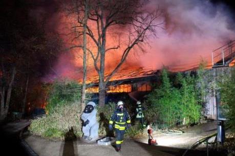 Hỏa hoạn nghiêm trọng tại vườn thú ở Đức