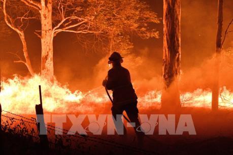 Cháy rừng tại Australia: Thêm 240.000 người dân được yêu cầu sơ tán