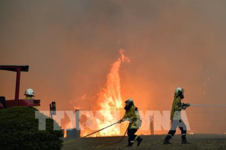 Australia điều lực lượng dự bị lớn nhất trong lịch sử ứng phó với cháy rừng