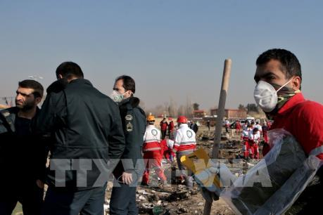 Vụ máy bay Ukraine rơi tại Iran: Các hộp đen sẽ được mở vào 10/1