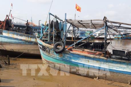 Cháy 5 tàu cá đánh bắt xa bờ, thiệt hại ước khoảng 13 tỷ đồng