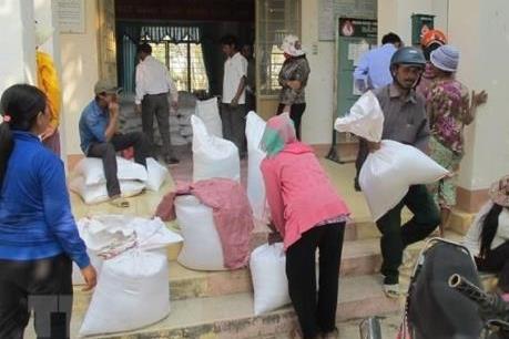 Xuất gạo hỗ trợ nhân dân bị ảnh hưởng thiên tai, dịch bệnh tỉnh Nghệ An