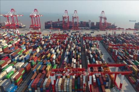 Dịch COVID-19 gây bất lợi cho vận tải biển