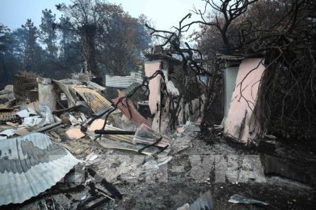 Cháy rừng khiến du lịch Australia có thể thiệt hại tới 1 tỷ AUD