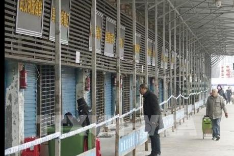 Trung Quốc: Tp. Vũ Hán triển khai loạt biện pháp ngăn virus corona lây lan