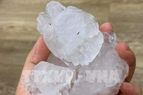 Bộ trưởng Nông nghiệp làm việc tại Bắc Kạn về khắc phục thiệt hại do mưa đá