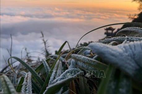 Dự báo thời tiết mùng 3 Tết: Vùng núi Đông Bắc Bộ có nơi dưới 7 độ C