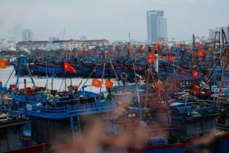 """Phát triển kinh tế biển Đà Nẵng-Bài 1: Gìn giữ """"chất biển"""" làm nền tảng cho sự phát triển"""