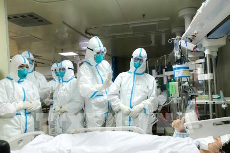 Dịch bệnh viêm phổi do virus corona