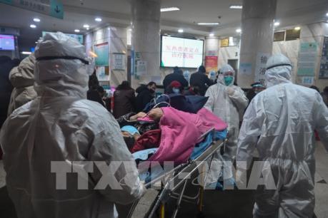 Trung Quốc kêu gọi người khỏi bệnh do virus Corona mới hiến huyết tương