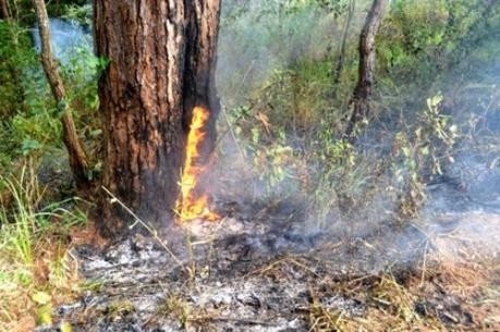 Một căn nhà bị thiêu rụi vì người dân đốt thực bì gần đó