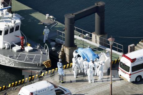 Dịch do virus Corona: Thêm 44 người nhiễm mới trên du thuyền Diamond Princes