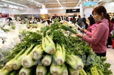 Rau xanh tại Đà Lạt bất ngờ tăng giá trước dịp rằm tháng Giêng