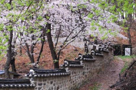 Năm điểm đến không thể bỏ qua khi khám phá Cheongju, Hàn Quốc
