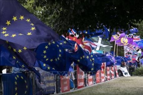 Đàm phán Brexit có thể bị trì hoãn do COVID-19