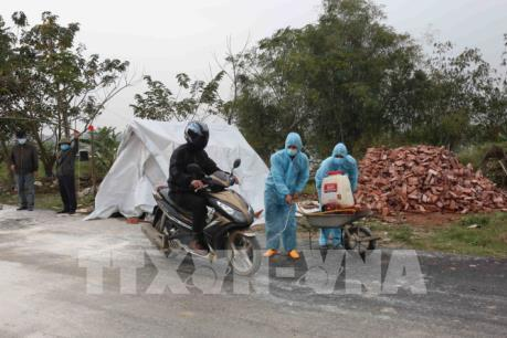 Các địa phương phòng, chống dịch cúm gia cầm A/H5N6