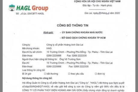 Hoàng Anh Gia Lai giải thể một công ty con