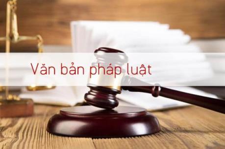 Thủ tướng thúc tiến độ ban hành văn bản quy định chi tiết