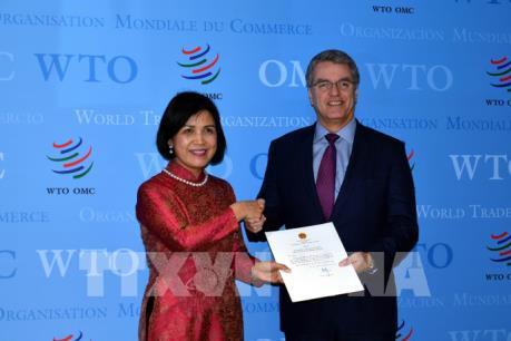Việt Nam cam kết phối hợp tích cực, chặt chẽ với WTO