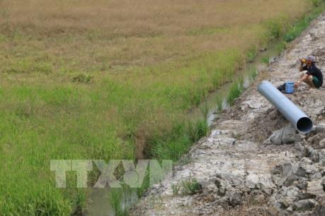 Liên minh châu Âu giúp đỡ người dân bị ảnh hưởng do hạn hán và xâm nhập mặn tại Việt Nam