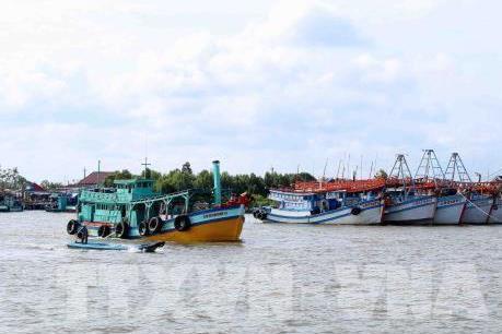 Đà Nẵng sẽ hoàn thành lắp đặt thiết bị giám sát tàu cá trước ngày 15/3