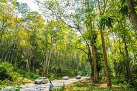 """3 ngày khám phá trọn vẹn vẻ đẹp """"rừng cao – biển sâu"""" xứ Nghệ"""