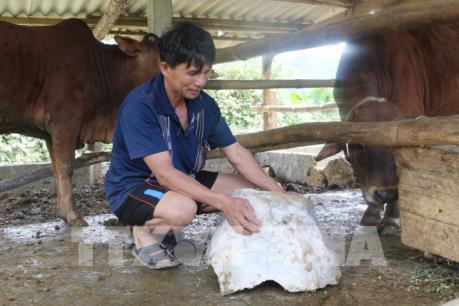 Nghệ An: Doanh nghiệp nổ mìn phá đá gây nguy hiểm cho người dân