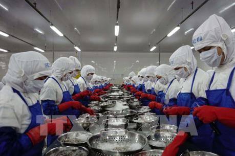 Dịch do virus Corona: Gỡ khó cho xuất khẩu lao động