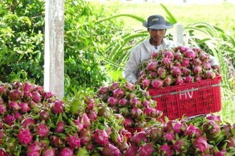Dịch COVID-19: Giải pháp hữu hiệu cho tiêu thụ nông sản
